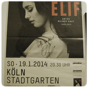 elif-tourposter